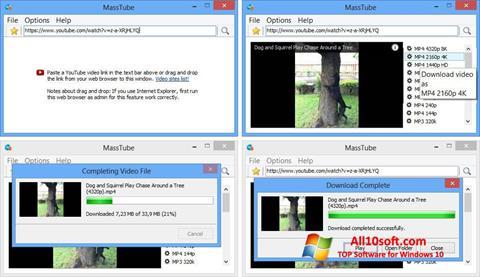 Ekran görüntüsü MassTube Windows 10