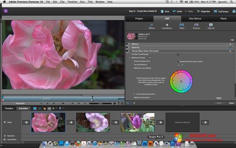 Ekran görüntüsü Adobe Premiere Elements Windows 10