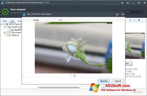 Ekran görüntüsü USB Flash Drive Recovery Windows 10