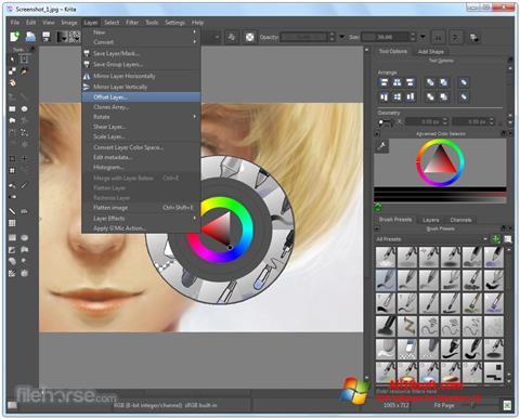 Ekran görüntüsü Krita Windows 10